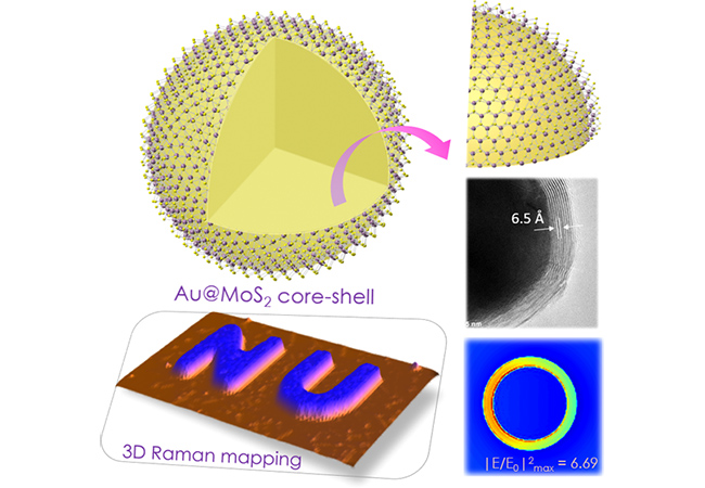 Representation of Au@MoS2 Core−Shell and a 3D Raman mapping