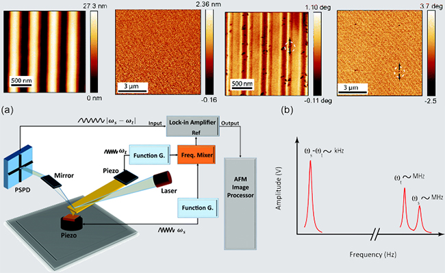 comparison between typical AFM topography and SNFU images